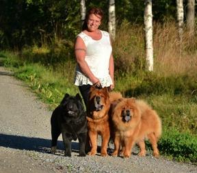 """Jag- Anna-Lena med tre av våra hundar - Sofia, Doncho och Ella. Bilden har även varit publicerad i tidningen """"Härliga Hund"""" efter ett repotage om rasen chow chow."""