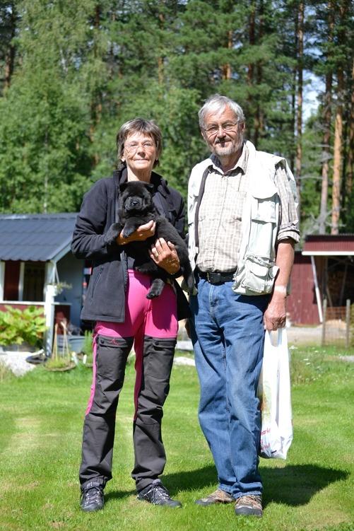 Scilla har flyttat med Gösta, Bodil och Commitment's Racing Red aka Ulex till Runhälla.