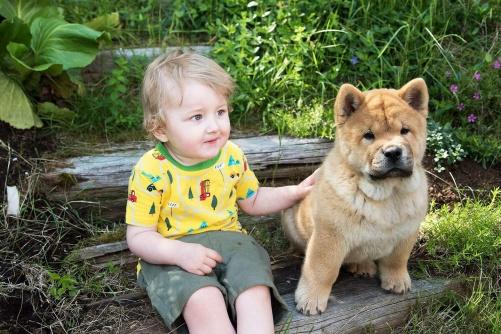Så fin bild. Jag älskar den. Detta är Scooby hos sin nya familj.