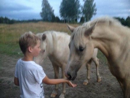 Lady och min yngsta son:)