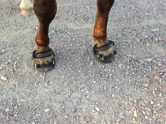 Nya skorna