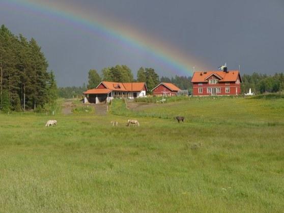 Det måste betyda lycka när regnbågen kommer på besök i huset.