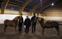 Unghästmönstring. Bästa sto & unghäst totalt - 2-åriga Olympia från Agersta 8.07, bästa unghingst Dóminó från Bolandet 7.99 Domare Nina Bergholtz.
