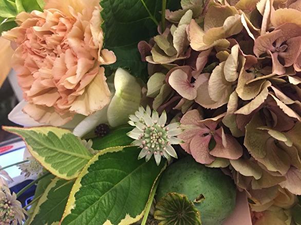 nihlstens blommor stockholm