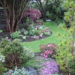 Trädgård i norr