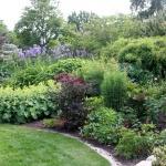 Trädgård.2