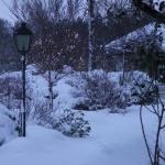 Vinter 2005