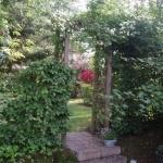 Välkommen in i vår trädgård