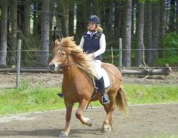 Sveipur från Fagerland