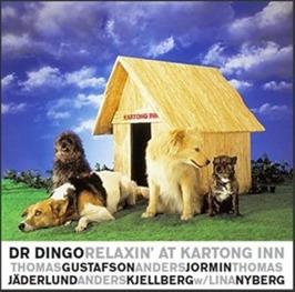 Dr DINGO