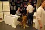 2010-01-07 Leonbergermontern My Dog, Maja och Sten i förgrunden