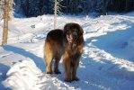 2011-01-13 Max