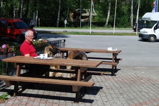 På väg till Röldal, Bill fikar gärna, alla fikaställen måste ju testas....