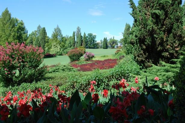 Bild från parken, den var stor med vidsträckta ytor.