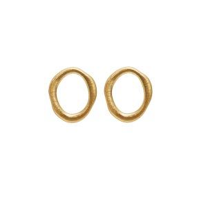 Örhängen - Örhängen guld ring