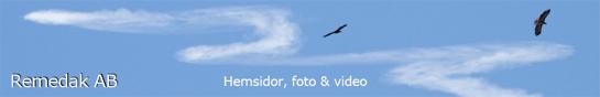 Kungsörnar ( F15 Eagle ?) och kondensstrimmor från JAS 39 Gripen