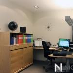 Björk mini kontor