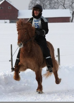 Thorvaldur till häst.