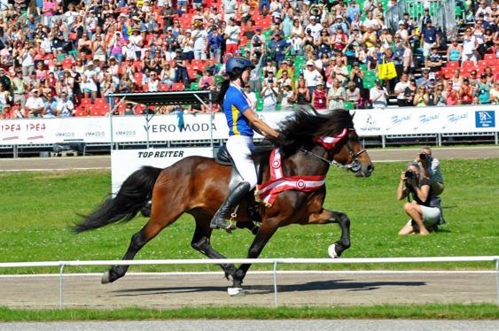 Svenskavlade Mökkvi från Åleby och young rider Moa Runnquist fick både guld och bronsmedalj. Mökkvi är e Hrafnfaxi frá Vestra-Geldingaholti.