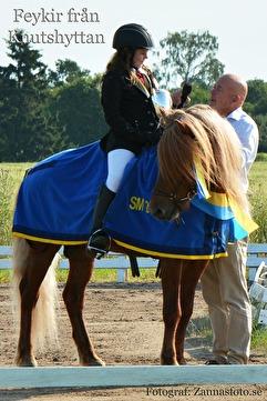 Feykir från Knutshyttan med junioren Alma Ýr Kellin Jökullsdotter är ett fint exempel på mycket bra avel av häst som är lämplig för sport mm.