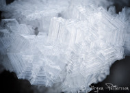 IceAge IV
