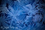 IceAge XXI