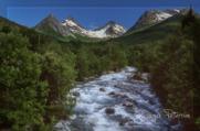 Grönska, vatten och berg.