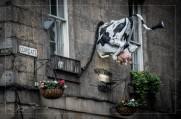 Cow Gate