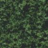 Granit China Green