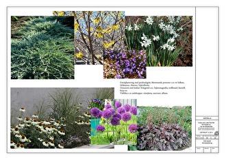 Växtförslag