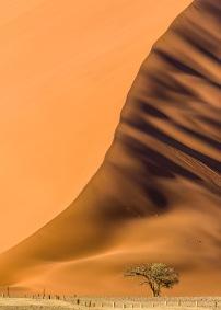 Sanddyna stående - Sanddyna stående 30x40cm Fine Art Poster