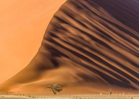 Sanddyna liggande - Sanddyna liggande 30x40cm Fine Art Poster