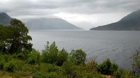 BORTE: Villaksen forsvinn dersom det ikkje blir redningsaksjon i Hardanger, meiner Direktoratet for Naturforvaltning. ARKIVFOTO: Helge Sunde