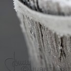 20091203_frost_0513