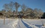 Stjärnbäck i vinterskrud! Klicka på bilden för att se den i större format!