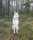 Tika i skogen