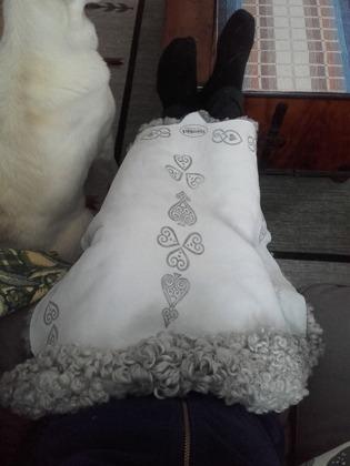 Dags för mys i soffan med lammskinn design Stjärnbäck!