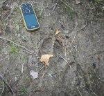 Bara ett par hundra meter från logen har älgen trampat omkring! Klicka på bilden för att se den i större format!