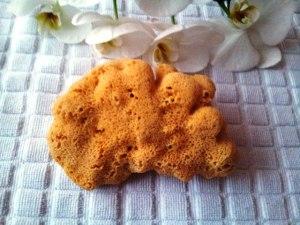 Natursvamp med anti-baktiella egenskaper. Olika storlekar, duschsvamp eller ta bort smink.