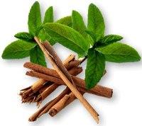 Pepparmynta & Kanel - doftolja istället för kaffe