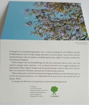 Träd har plantererats i VIskogen