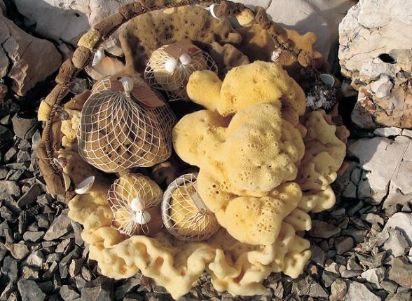 Havssvampar ger ömsint peeling
