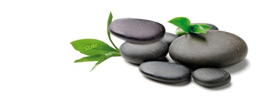 Zen - ett sätt att uppnå harmoni och balans