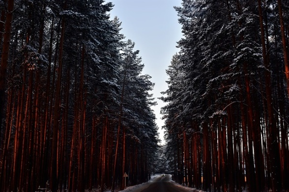 Kör försiktigt i vinter