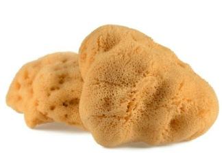 Paket med Svamptamponger - 5 svampar i olika storlekar - 5 svamptamponger i olika storlekar
