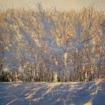 Vinterljus 40x50 såld