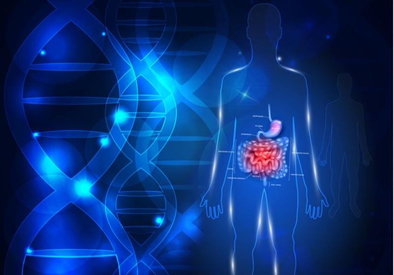 Tarmtest med DNA-teknik