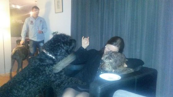 Yatzie on New Year night stealing an oliebol out of my hand!