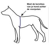 vgw-sele-hund-extension-borstkas_meten