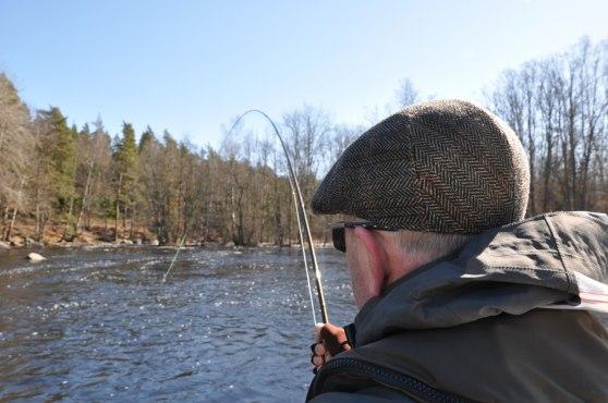 Tung fisk i tunga strömmar är alltid en utmaning
